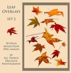 Leaf Overlays SET 2 PNG
