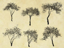 198 cutout trees by Tigers-stock