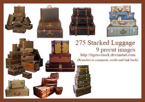 275 Stacked Luggage by Tigers-stock