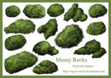 277Mossy Rocks by Tigers-stock