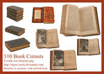 510 Book Cutouts