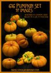 616 Pumpkin Set