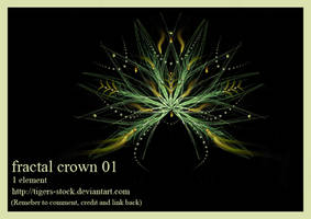 667 Fractal Crown 01 by Tigers-stock