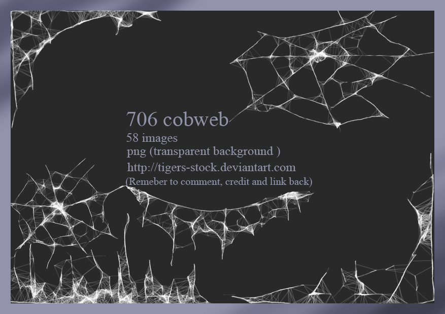 706 Cobweb By Tigers-stock