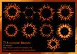748 Sunstar Frames