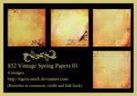 852 Vintage Spring Papers 01