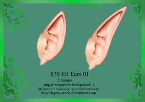 870 Elf Ears 01