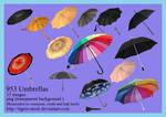953 Umbrellas
