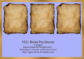 1021 Burnt Parchment