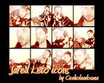 Jared Leto 12 icons by Czekolaadowaa