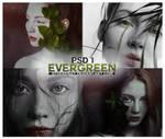 PSD 1 - Evergreen