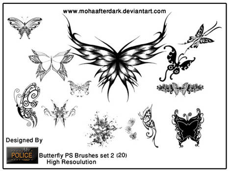 butterfly brushes set2