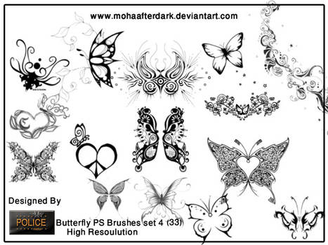 butterfly brushes set4