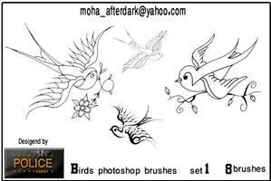 Birds brushes by mohaafterdark