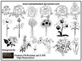 flowers brushes  set5 by mohaafterdark