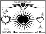 Heart brushes set7