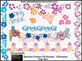 Beautiful Flowers by mohaafterdark