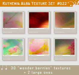 Txt Set 22: Wonder Berries by Ruthenia-Alba