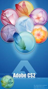 Adobe Creative Suite 2: Clear
