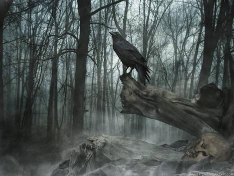 Grave mound -WP-