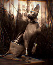 Mechanical Cat [Trippy Animation] by FabioRosado