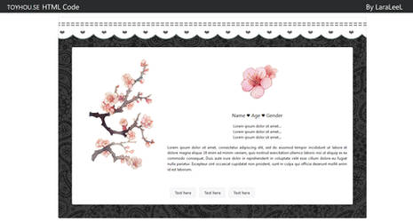 ToyHouse - Profile Page Code