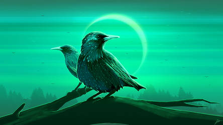 Starling Eclipse