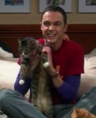 Sheldon's Zazzy ANIMATED by IngDianita