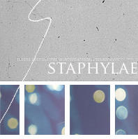 staphylae textures by anliah
