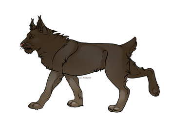 Free to Use Lynx Lineart
