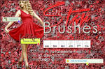 +Star Brushes.