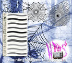 10 Spider Web Brushes