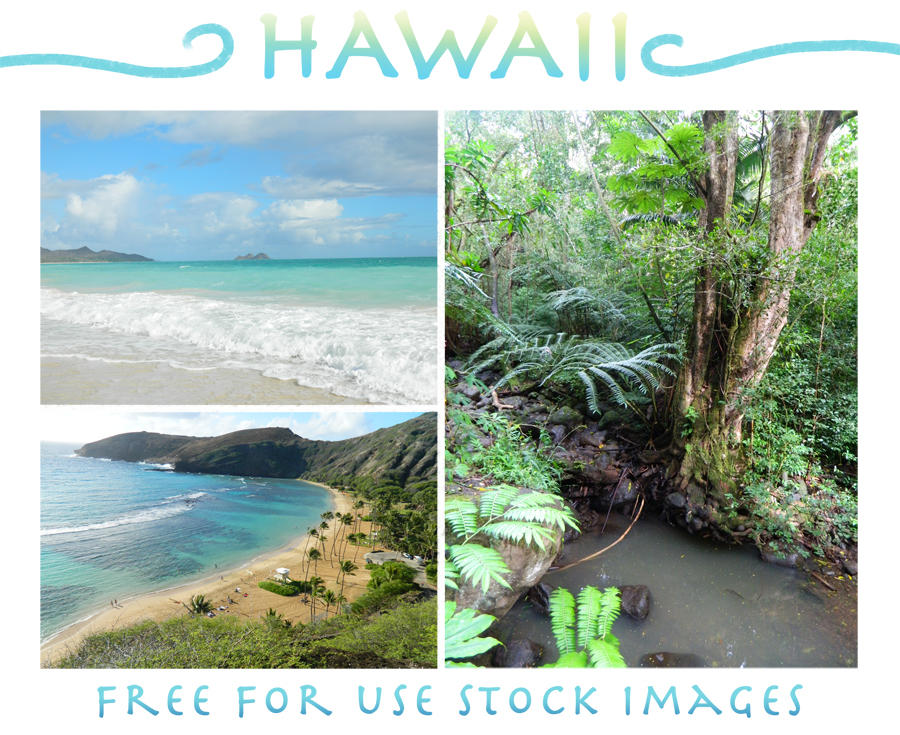 Hawaii - Free stock for personal and commercial by mmishee