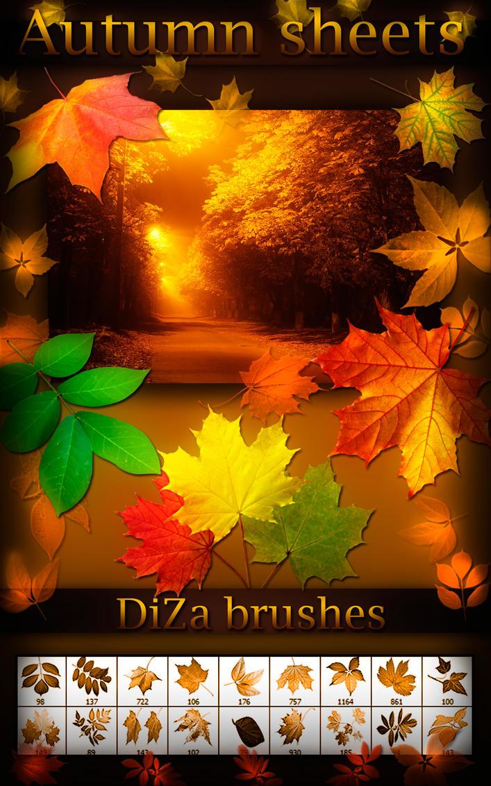 Autumn sheets brushes
