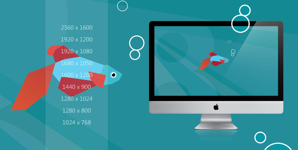 Windows 8 : Beta Fish wallpaper pack by Draganja