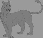 V.1 Lioness lineart
