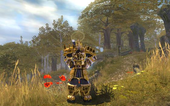 FableTLCMod - Avarice's Battle Armour by OverlordAvarice