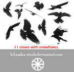 snow crows brushes