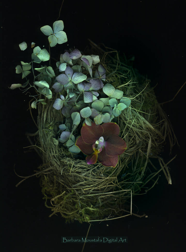 Nest with flowers