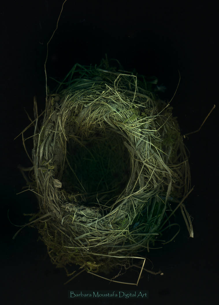 Just a nest