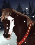 674 RRA's Moose