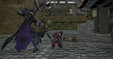 ffxiv Why you shouldn't let a lalafell be lead. by saler1
