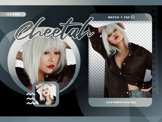 CHEETAH PNG PACK by cupidwhyhiding