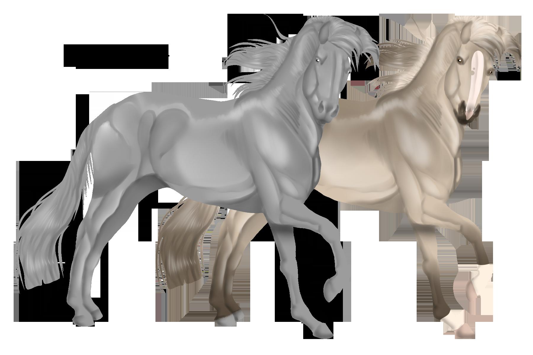 Lineless Horse Base 1