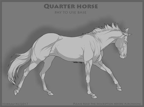Quarter horse P2U BASE 