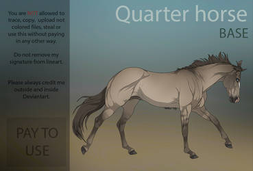 Quarter horse base  PAY TO USE  by HorRaw-X