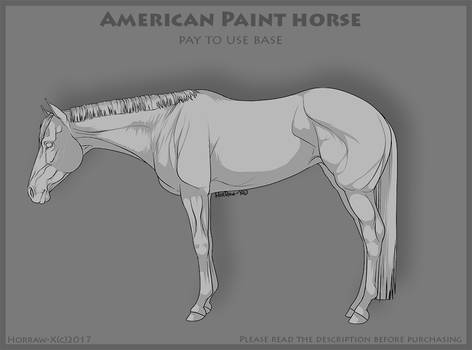 American Paint  PAY TO USE 