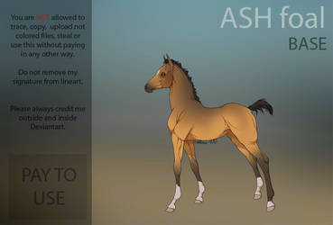 ASH foal base  PAY TO USE  by HorRaw-X