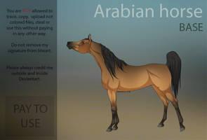Arabian Horse  P2U Base  by HorRaw-X