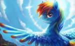 portrait: Rainbow Dash